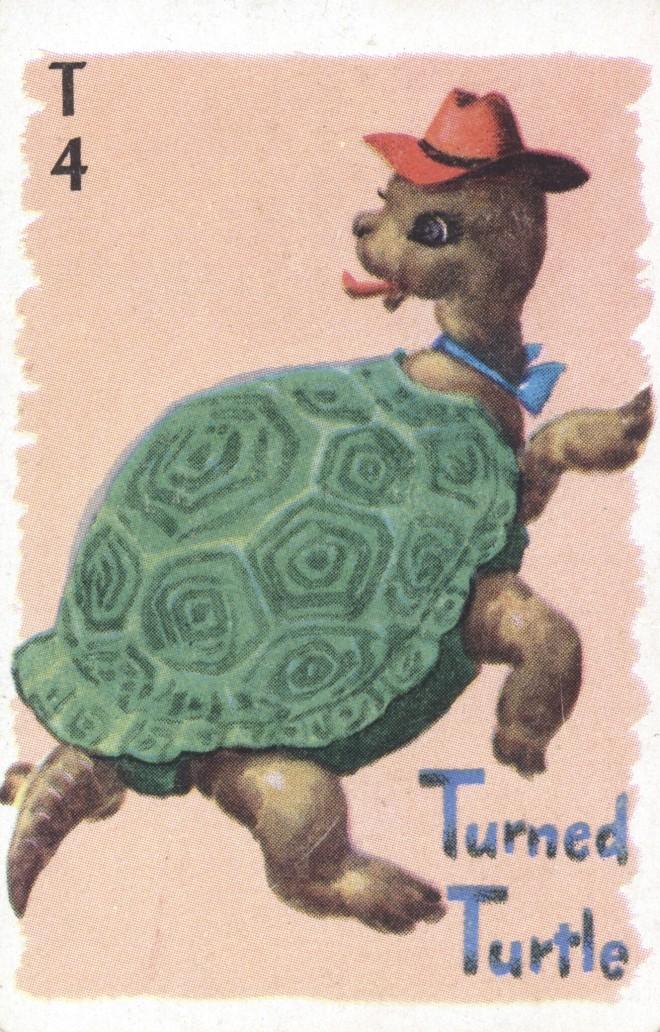animal-rummy-3